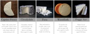 Elderslie Cheeses